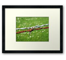 Still Life with Barbed Wire Framed Print