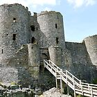 Harlech Castle North Wales (UK) by hootonles