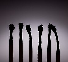 Silhouettes of burnt matches on vignetting background by odstrcil