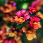 Summer Colours Duvet by Kasia-D