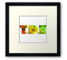 TDE Rastafarian Framed Print