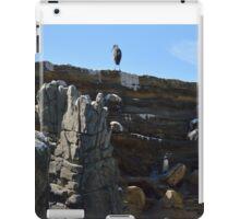 Penguin Pen iPad Case/Skin