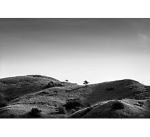 Trees and Hills Photographic Print
