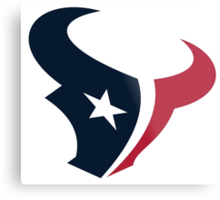 Houston Texans Fan Metal Print