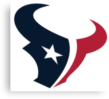 Houston Texans Fan Canvas Print