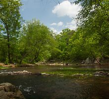 Springtime on the Eno River by Kelvin  Taylor