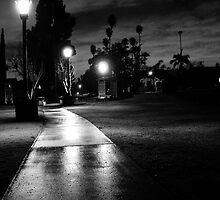 Garfield Park After Dark by Laurie Allee