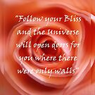 Follow your Bliss by LifeisDelicious