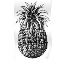 Ornate Pineapple Poster