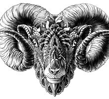 Ram Head by BioWorkZ