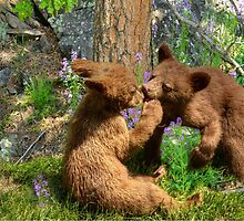 Kissing Cubs by littlecritters