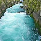 Huka Falls, New Zealand by Margaret  Hyde