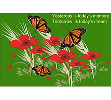 Poppies and butterflies (2506 Views) Photographic Print