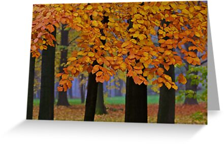 Views: 12184  ♥ ♥ ♥ ♥ series . Forever Autumn   . Eye-catcher - For Sure ! Fav: 76.  Thx friends ! muchas gracias !!! This image Has Been S O L D . Buy what you like!  by © Andrzej Goszcz,M.D. Ph.D