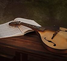 String Along by Karine Radcliffe
