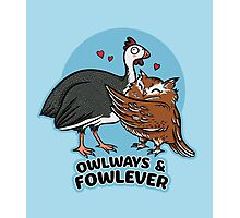 Owlways & Fowlever Photographic Print