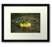 Ribbit Frog Framed Print