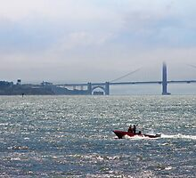 San Francisco Bay Run About by David Denny