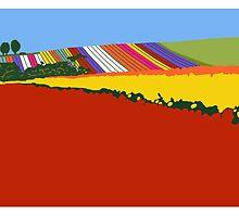 Colour Shock, Table Cape by Richard Klekociuk