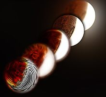 Lunar eclipse evolution by Jayson Gaskell