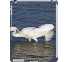 Snowy Egret iPad Case/Skin
