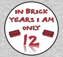 IN BRICK YEARS I AM ONLY 12 Kids Clothes
