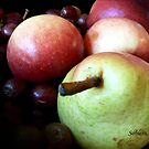 By all ap-pear-ances... by Rosemary Sobiera
