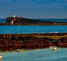 Nobby's Headland by VinImagery