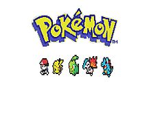 Pixelated Pokemon Photographic Print