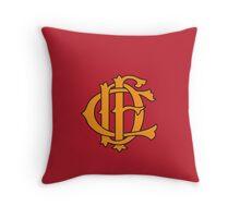 CFD Throw Pillow