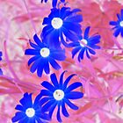WHIMSY -(inverted colours) by goddarb
