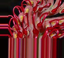 wired red  by Wieslaw Jan Syposz