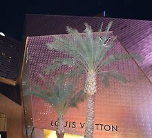 Louis Vuitton Store by davidjr