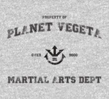 Planet Vegeta Martial Arts Department (Dragonball Z) by Larsonary