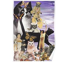 Cute Cat Collage 4 Poster