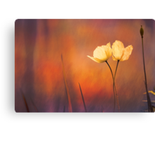 Forest Dawn Canvas Print