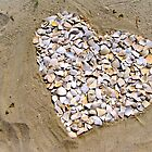 Love on the Beach by Colleen Kammerer