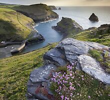 Cornwall : Boscastle Harbour by Angie Latham