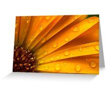 zomers kleuren in zomerse regen Greeting Card