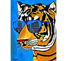Cool Tiger in Sun Shades  Photographic Print