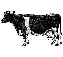 Vintage Cattle Side View (no grass) woodcut style by cartoon