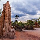 Giant Termite Mound, Litchfield National Park, NT by Natalie Ord