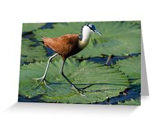 Hunting for Breakfast Greeting Card