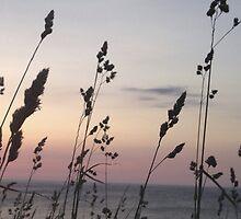 inverness sunset by hankierat