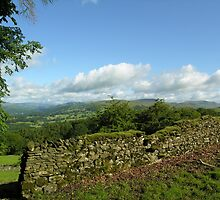 Dry stone wall and view north, just below Orrest Head, English Lake District National Park. by Philip Mitchell