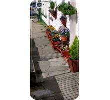 Pavement Gardens iPhone Case/Skin
