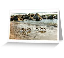 Sunset Sandpipers Greeting Card