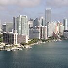 Miami Skyline by Kasia-D