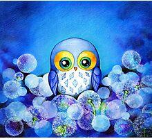 Lunar Owl Photographic Print