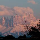 Pretty in Pink: Sunset on the Dolomites by L Lee McIntyre